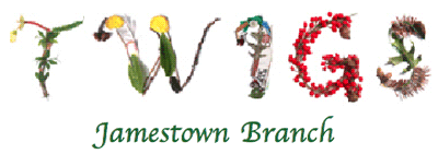 AAUW Jamestown (NY) Branch Twigs Newsletter Header